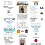 RCSalamancaBulletin47_16June15